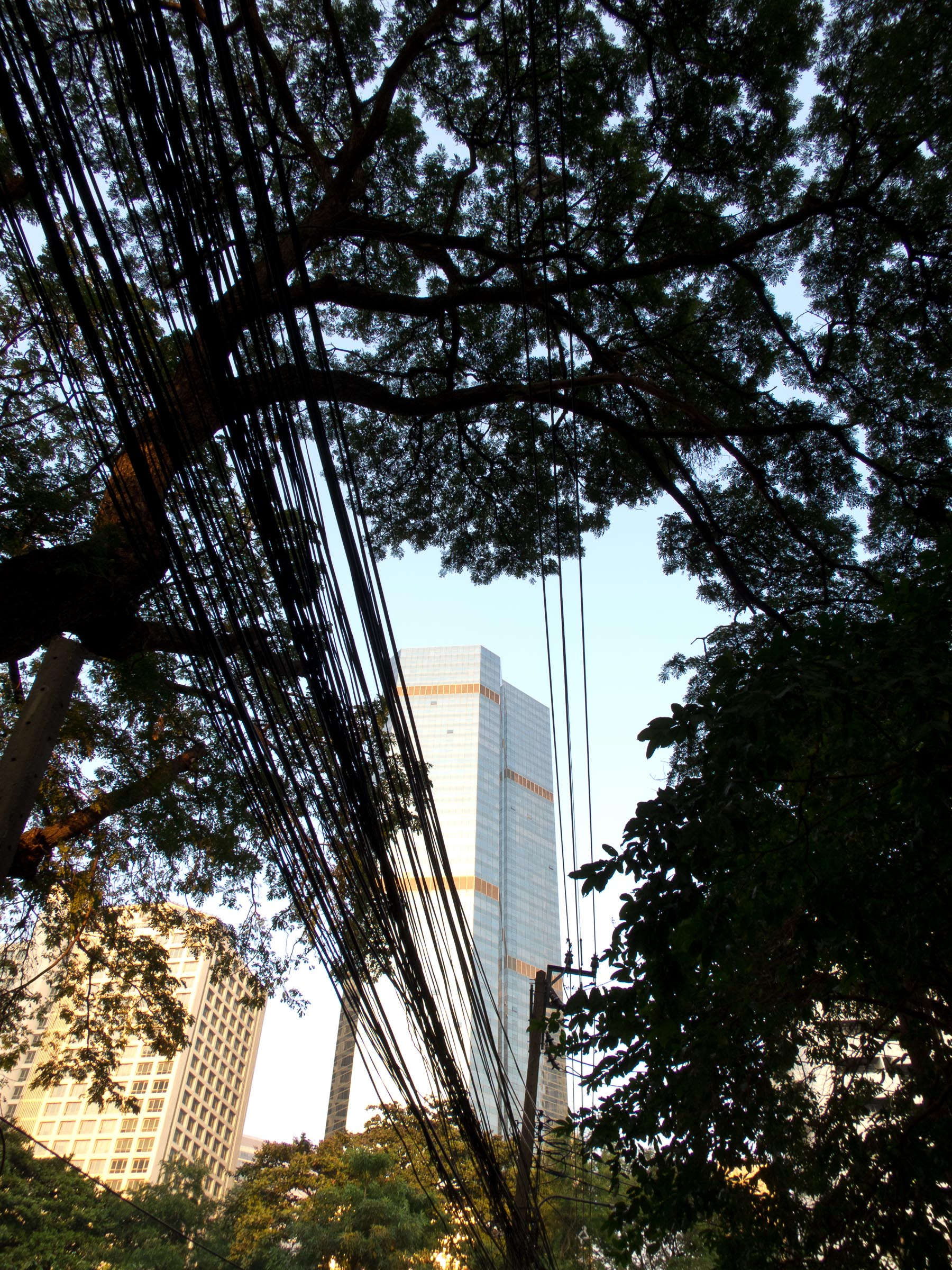 160127_Bangkok_167