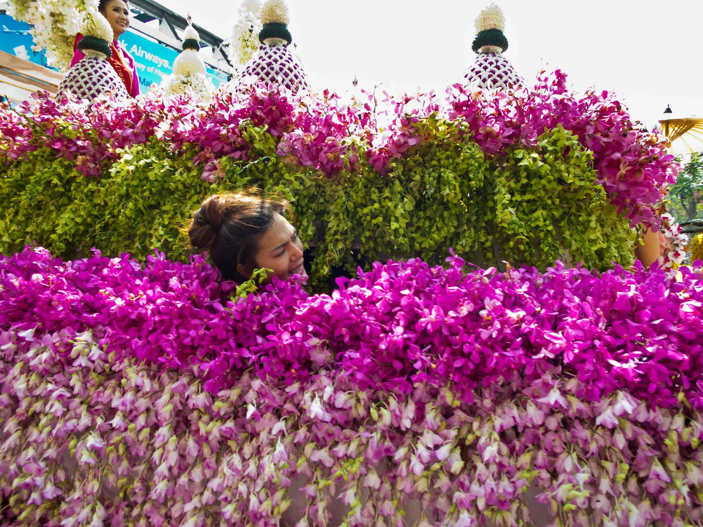 160206_Flower_Festival_72