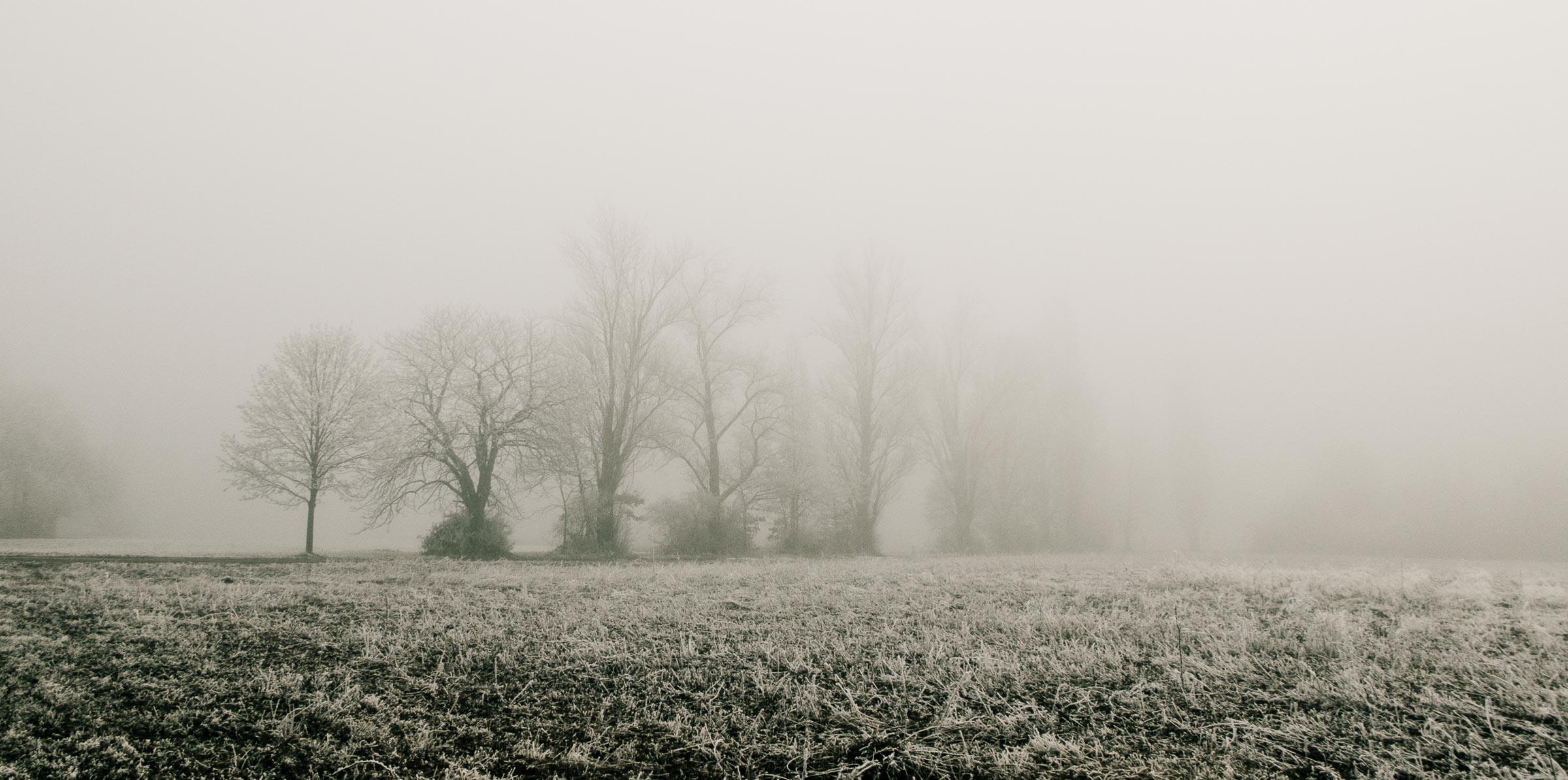 311216_Winter-Magic_025-2