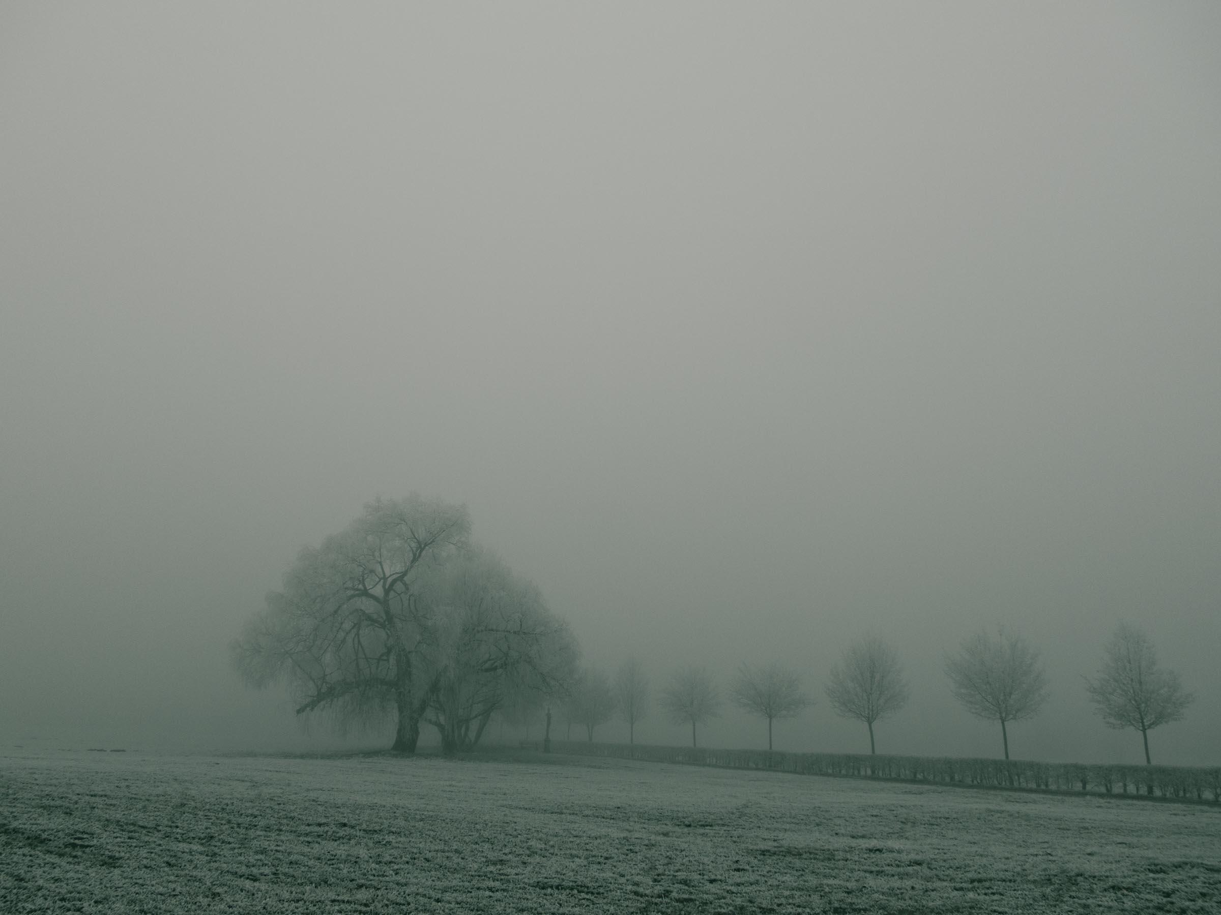 311216_Winter-Magic_040